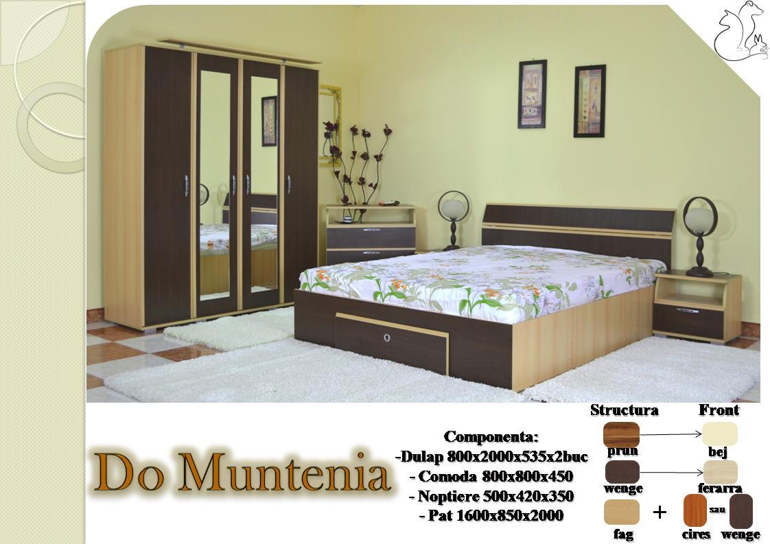 Dormitor-Muntenia